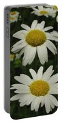 Patch Of Daisies Portable Battery Charger