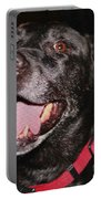 Patchwork Black Lab Closeup Portable Battery Charger