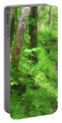 Path In The Forest Portable Battery Charger by Jill Lang