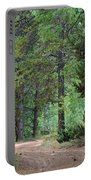 Path Through The Pines - Casper Mountain - Casper Wyoming Portable Battery Charger