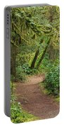 Path Through The Rainforest Portable Battery Charger