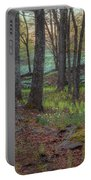 Path To The Daffodils Portable Battery Charger by Bill Wakeley