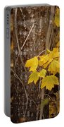Patterns Of Fall Portable Battery Charger