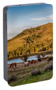 Patterson Mountain Afternoon View Portable Battery Charger