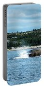 Peaceful Cove Portable Battery Charger
