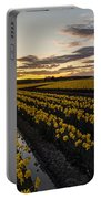Peaceful Skagit Serenity Portable Battery Charger