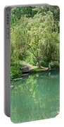 Peaceful Willow Tree Art Prints Portable Battery Charger