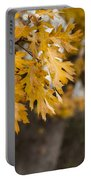 Peacefull Fall Walk Portable Battery Charger