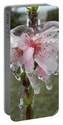 Peach Blossom In Ice Portable Battery Charger