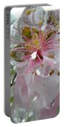 Peach Blossom In Ice Two Portable Battery Charger
