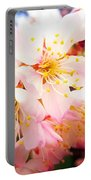 Pale Peach Blossom Portable Battery Charger