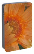 Peach Daisy Cluster Portable Battery Charger