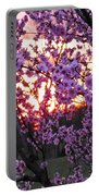 Peachy Sunset 1 Portable Battery Charger