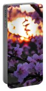 Peachy Sunset 3 Portable Battery Charger
