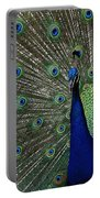 Peacock 18 Portable Battery Charger