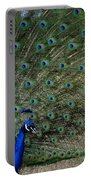 Peacock 8 Portable Battery Charger