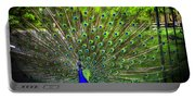 Peacock Beauty 3 Portable Battery Charger