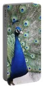 Peacock Fanning Portable Battery Charger