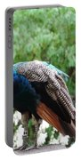 Peacock On A Rock 1 Portable Battery Charger