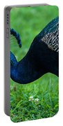 Peacock Portrait 5 Portable Battery Charger