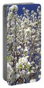 Pear Tree Blossoms In Spring Portable Battery Charger