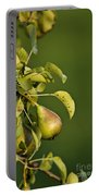 Pear Tree Portable Battery Charger