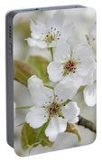 Pear Tree White Flower Blossoms Portable Battery Charger