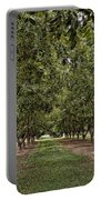 Pecan Orchard Sahuarita Arizona Portable Battery Charger