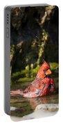 Pedernales Park Texas Bathing Cardinal Portable Battery Charger