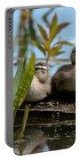 Peeking Ducks Portable Battery Charger