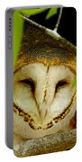 Peering Barn Owl Portable Battery Charger