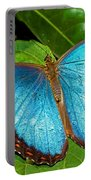 Peleides Blue Morpho Portable Battery Charger