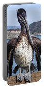 Pelican At Avila Beach Ca Portable Battery Charger