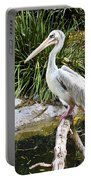 Pelican At Rest Portable Battery Charger
