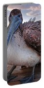 Pelican Close And Low Portable Battery Charger