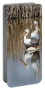 Pelican Deuce Portable Battery Charger by Diane Alexander