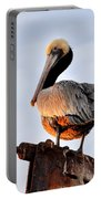 Pelican Looking Back Portable Battery Charger