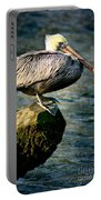 Pelican On A Pole Portable Battery Charger