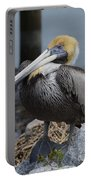Pelican On Rocks Portable Battery Charger