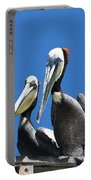 Pelican Pair At Oceanside Pier Portable Battery Charger
