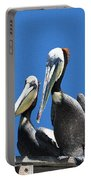 Pelican Pair Portable Battery Charger