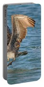Pelican Taking Off Portable Battery Charger
