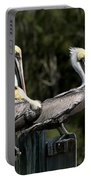 Pelican Threesome Portable Battery Charger