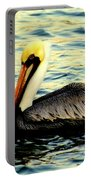 Pelican Waters Portable Battery Charger by Karen Wiles