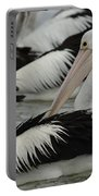 Pelicans Galore Portable Battery Charger