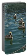 Pelicans On The Water In Key West Portable Battery Charger