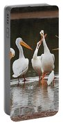 Pelicans Singing Auld Lang Syne Portable Battery Charger
