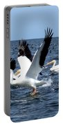 Pelicans Taking Flight Portable Battery Charger