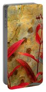 Penstemon And Boulder Portable Battery Charger