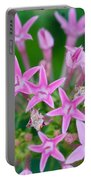 Pentas 'cranberry Punch' Flowers Portable Battery Charger